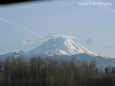 20110210-SeattleTrip-MountRainier-20
