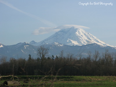 20110210-SeattleTrip-MountRainier-19