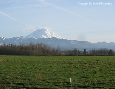 20110210-SeattleTrip-MountRainier-18