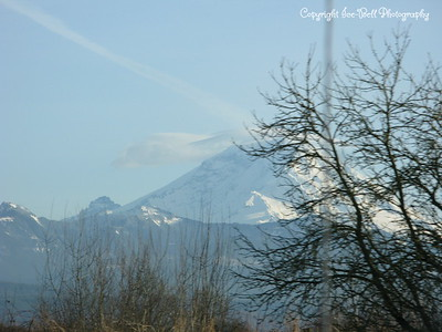 20110210-SeattleTrip-MountRainier-14