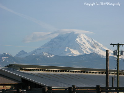 20110210-SeattleTrip-MountRainier-16
