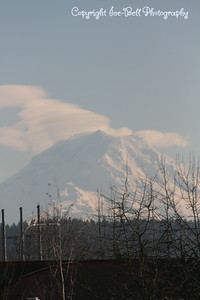 20110210-SeattleTrip-MountRainier-12
