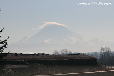 20110210-SeattleTrip-MountRainier-06