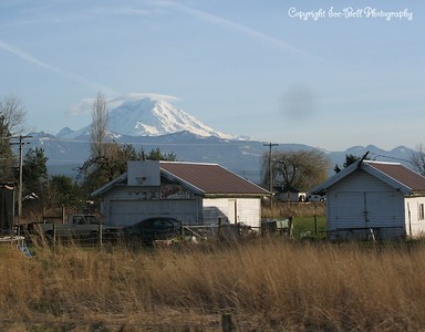 20110210-SeattleTrip-MountRainier-17