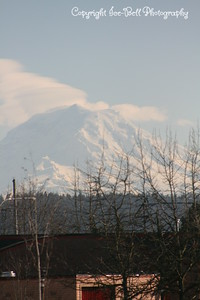 20110210-SeattleTrip-MountRainier-13