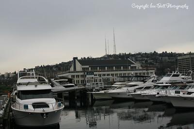 20110211-SeattleTrip-36