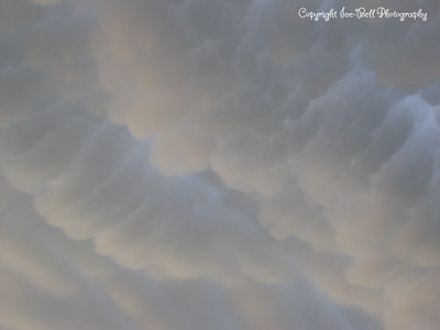 06/23/03  Mammatus clouds over Hays, KS.  The storms that caused these clouds where off to the west of Hays several counties.