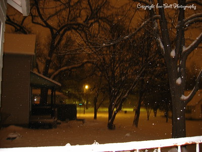 Looking towards Edgewood Park from my front porch.