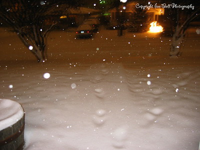 Looking down at where my sidewalk should be out front.  Footsteps you see would be from the postman.
