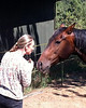 Jane & Glory 0368 al sh300