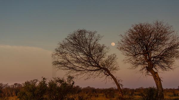 Bulawayo sunset