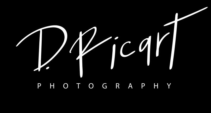 D.Ricart-white-high-res-on-black