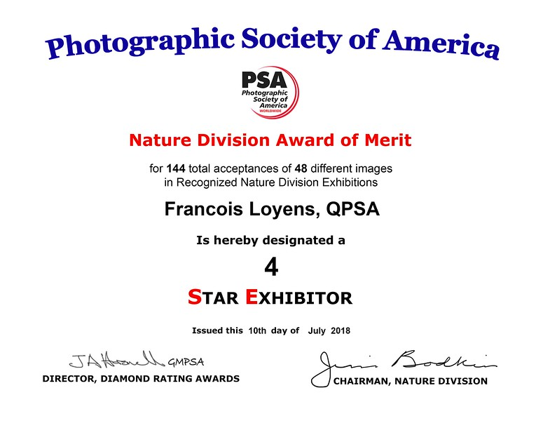 Francois Loyens ND STAR 4 certificate