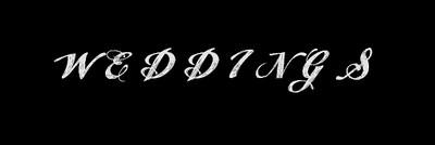 logosplashweddings