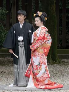 Wedding  Meiji Shrine, Tokyo