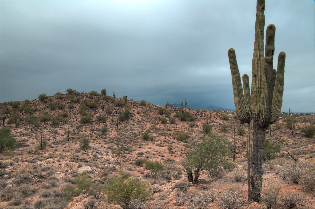 It was actually raining, check out the quasi mountain off in the distance to the right center.