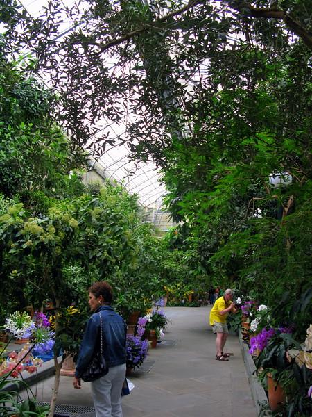 Inside the US Botanical Gardens