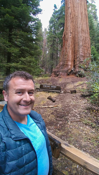 General Grant sequoia tree, the second largest tree in the world