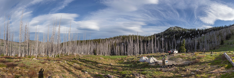 """Our campsite at """"Meadows Campground"""", up at 6800' elevation. A fire swept through here a number of years ago."""
