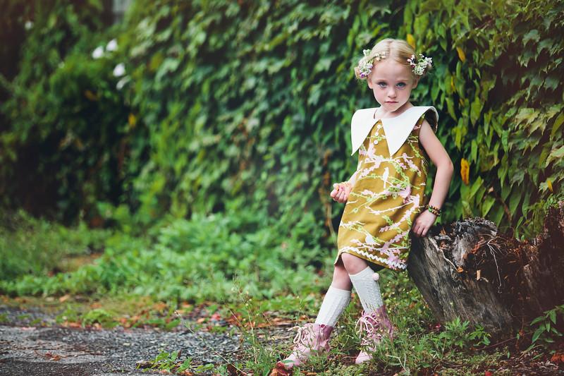 Ashley Lynne bird dress