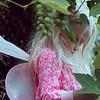 Ruby Fairy in grapevine Kristen Rice