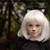 Halloween cat 2015 2 - 3