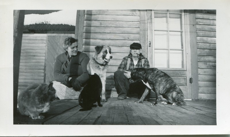 Pets on the porch