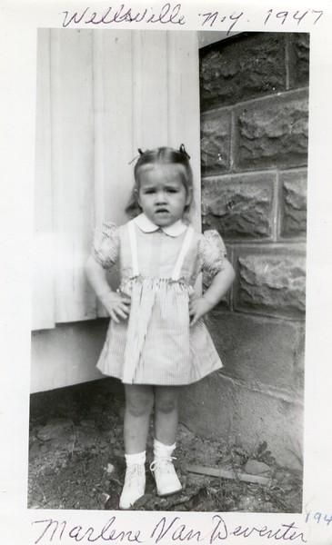 1947 Marlene Franklin Street Wellsville NY