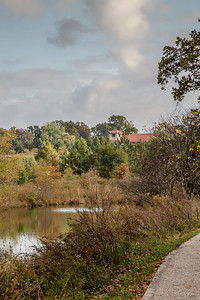 Forest Park 11 3 2016-4074