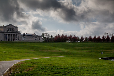 Forest Park 11 3 2016-4071