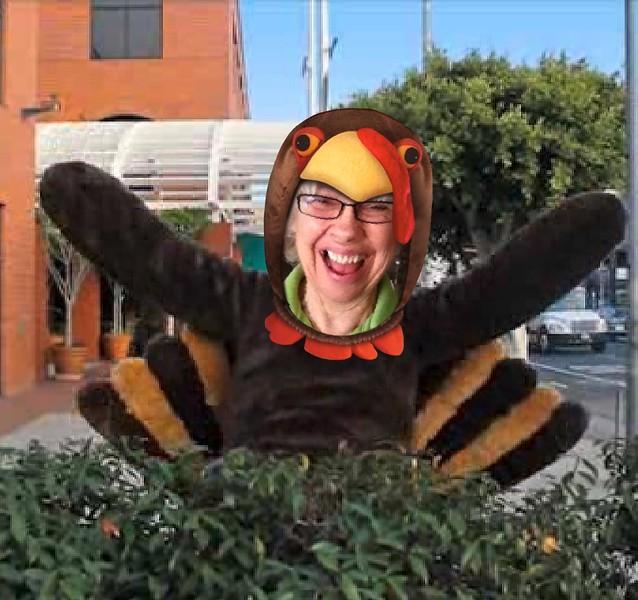 Carol turkey