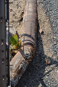 09_09_19 venice and LA river 0100