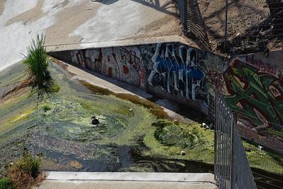 09_09_19 venice and LA river 0267