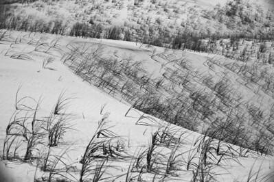 10_05_31 kelso dunes 0043