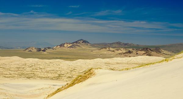 10_05_31 kelso dunes 0092