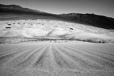 10_05_31 kelso dunes 0112