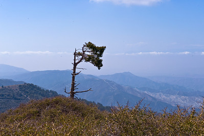 08_04_06 Mt. Gleason 0221