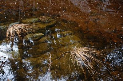 09_02_08Strawberry Peak Stream0706