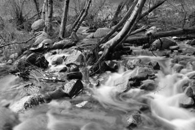 09_02_08Strawberry Peak Stream0633