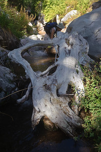 09_09_20 canyoneering big falls 0116