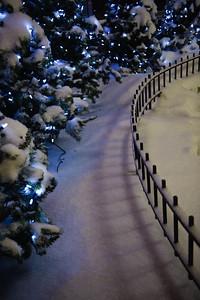 08_12_23 christmas 5 0113