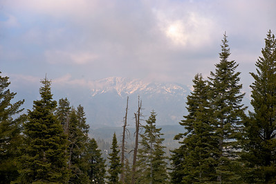 08_03_08 sequoia and turlock 0187