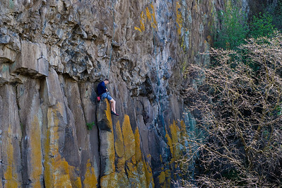 08_03_09 sequoia and turlock 0255
