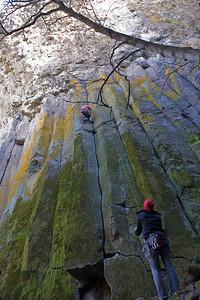 08_03_09 sequoia and turlock 0291