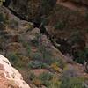 08_11_02 Zion Overlook Hike 0250