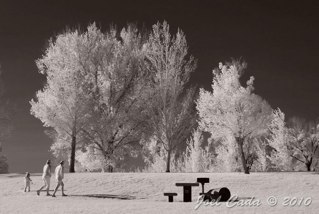 Floyd Lamb Park (3/27/2010)