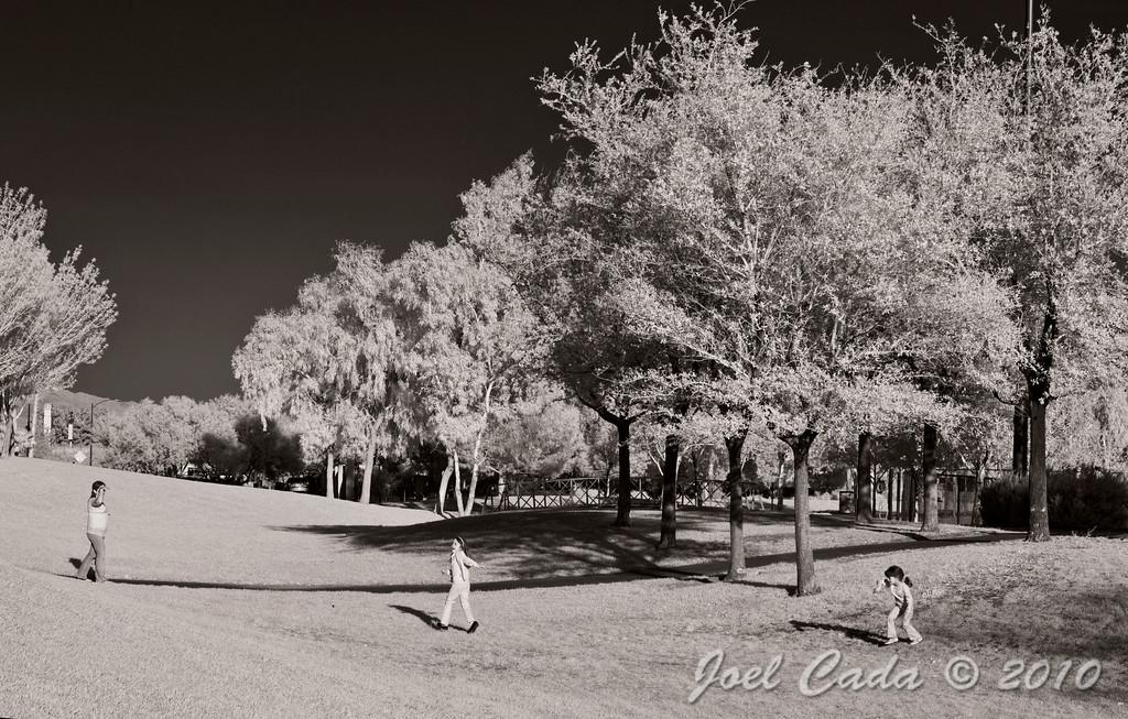 Rainbow Park (3/27/2010)