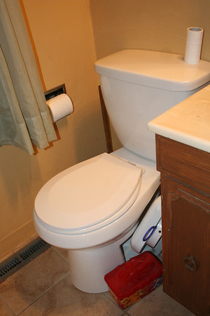 "Day Seventeen:  Although not officially a part of the ""kitchen"" remodel--The bathroom toliet which had not been working properly was replaced with a new one by Russ' dad.  Thanks Stan!"