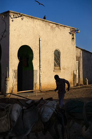 Old Streets of Harar