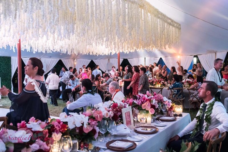 The Reception Venue - VI